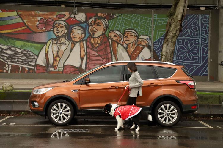 長距離的旅行對於人和寵物相當消耗體力,因此建議每隔一至兩個小時停車休息一下。下車前,記得給寵物繼上繩子,以免寵物過於興奮而跑遠。