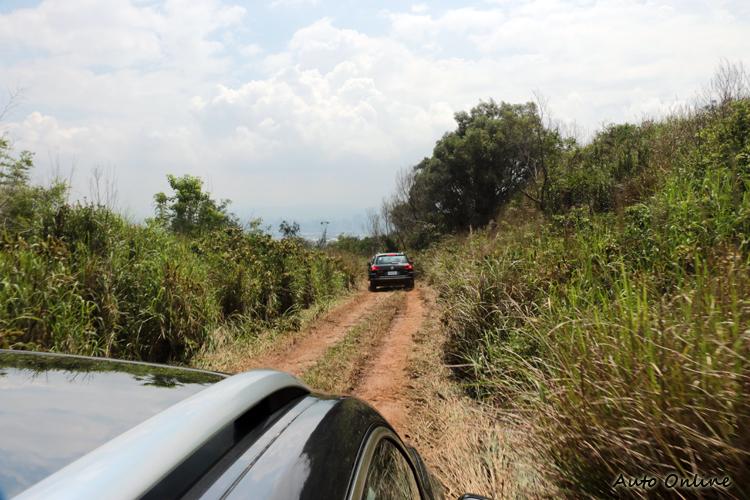 照片中的路徑是林道中常見場景,也是本次活動最輕鬆的路段。