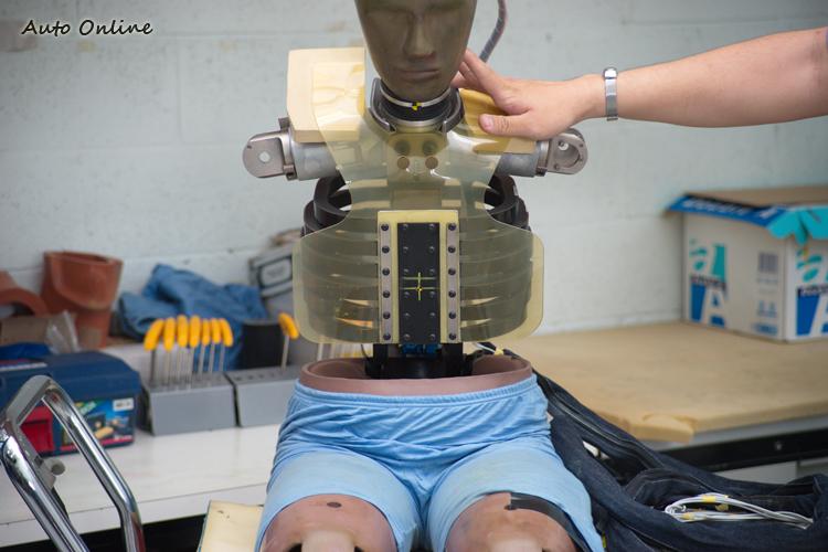 人偶的頭部、胸部與骨盆都有許多感測器,紀錄撞擊時所受到的力量。